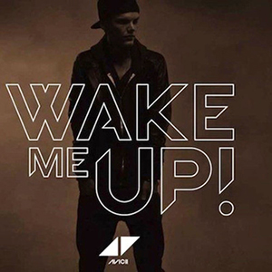 Avicii : Wake me up