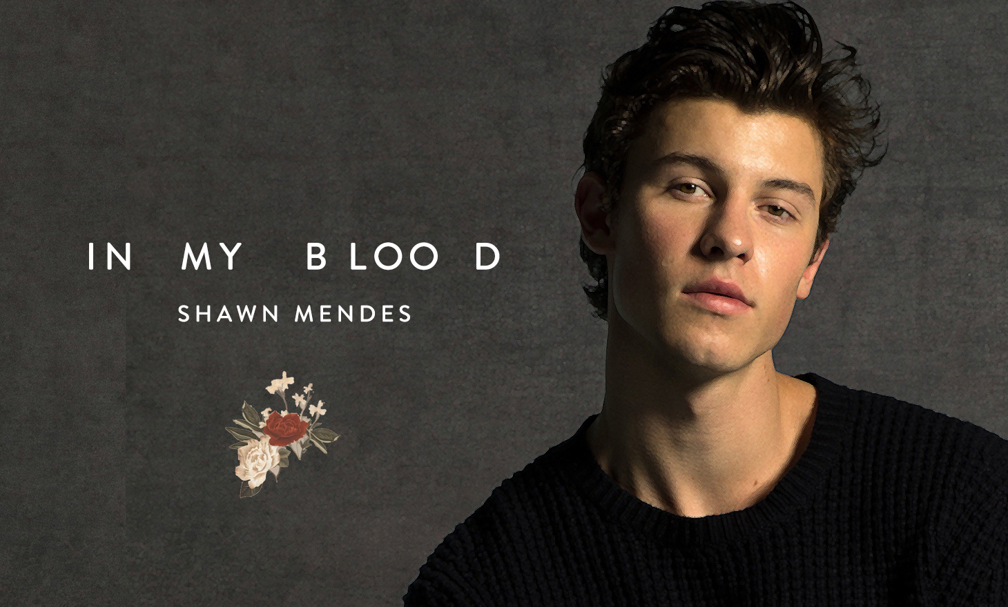 Shawn Mendes : In My Blood