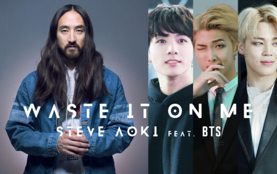 Steve Aoki feat. BTS : Waste It On Me